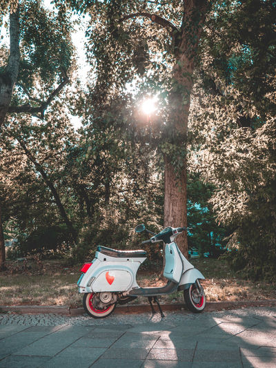 Mobility in Mega Cities Motorcycle Vespa Bright Brightly Lit City Day Land Vehicle Lens Flare Mode Of Transportation Moto Motor Vehicle Motorcycles Nature No People Outdoors Plant Stationary Sun Sunbeam Sunlight Sunny Transportation Tree Vintage