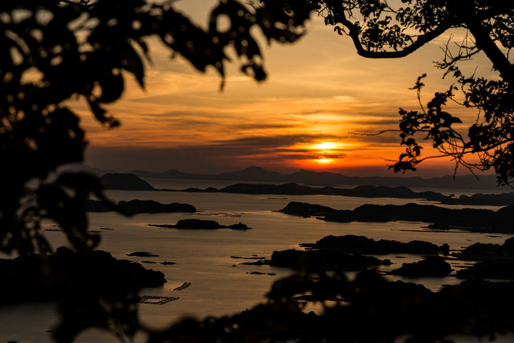 Beauty In Nature Cloud - Sky Dramatic Sky Reflection Sea Sun Sunset Tree