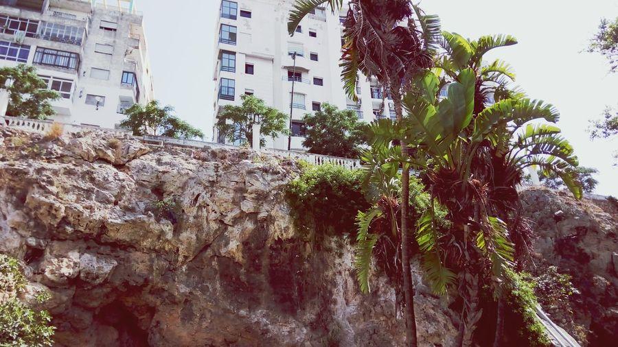 Tetouan The White City Cavern House Infinixhot3 First Eyeem Photo