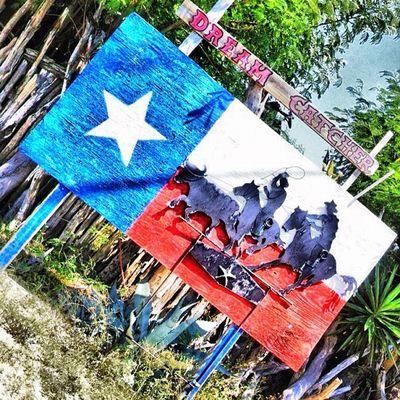 Happy Texastuesday my friends just a little Souvenir from Zapataranch . Texaspride southtexas teamroping texas southtexas igtexas texasinstagram