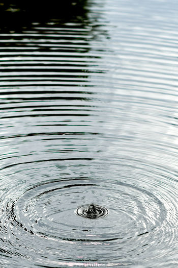 Ripples In The Water Ripples Rippled Water Ripples In Water Ripple Effect Ripples On The Water Rippled Reflections Rippled Water Drop Nature Backgrounds Full Frame No People Splashing Droplet Outdoors Pattern Purity