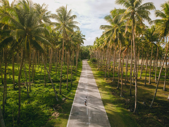 Skateboarding in a palm tree road EyeEm Best Shots Drone  Dji Travel Philippines Palm Tree Skateboarding Road Siargao Green Tree Sky Grass Garden Path vanishing point Stepping Stone Straight Pathway Double Yellow Line The Way Forward Passageway Long Country Road Empty Road Walkway Woods Diminishing Perspective Footpath Railway Track Wall Lamp