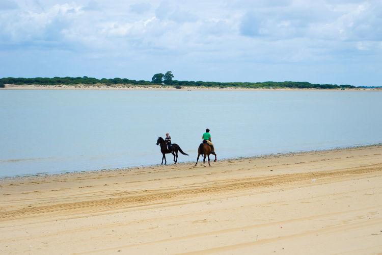 Men Riding Horses On Beach By Sea Against Sky