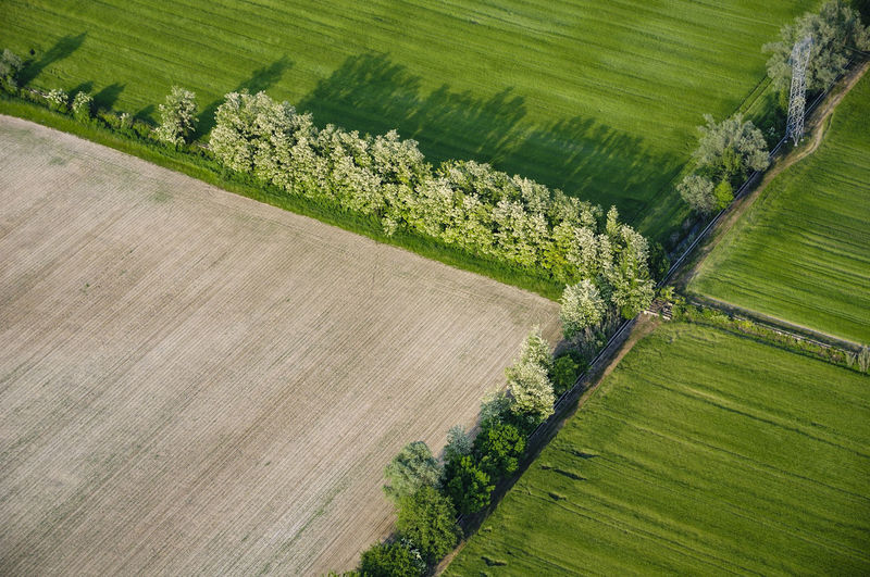 Agriculture field limits
