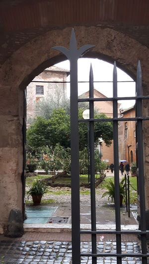 Built Structure Tree Architecture Plant Day Sunlight Growth Protection No People Nature Building Exterior Water Indoors  Greenhouse Sky Trastevere Garden Church Rome