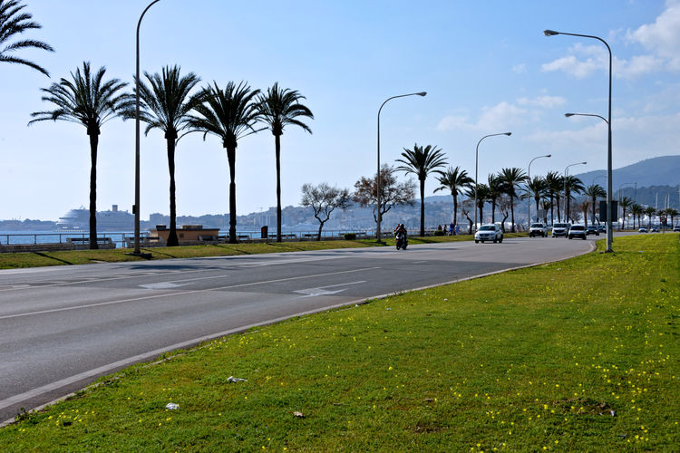 cityscape of a street seafront with traffic and palm trees Plant Tree Road Transportation Street City Palm Tree Direction Outdoors Palma De Mallorca Street Photography Cityscape Nature No People Garden The Way Forward Tropical Climate Mode Of Transportation Traffic Main Street Day Lighting Equipment Travel Destinations