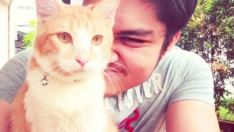 i love my boy. my bestfriend. Cat♡ Catlovers Cute Pets Mycatandme