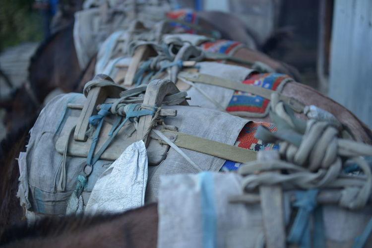 Annapurnabasecamp Expedition Lasttiere Maultier Maultiere Muli Nepal Nepal #travel Nepal Travel Trek Trekking Trekking #travelling #sightseeing Trekking In Nepal Trekking Nature Love