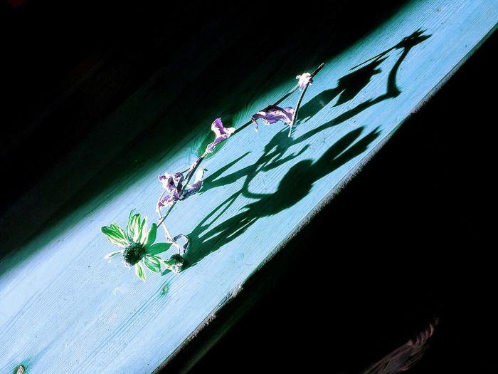 Good Morning, Shadows Are Beautiful,