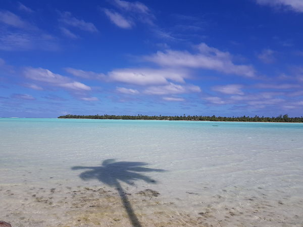 Travel Destinations Tahiti Beach Sand Sea Sky Nature Beauty In Nature Tranquility Horizon Over Water Water Vacations Landscape Blue Vacations French Polynesia Palm Tree Ilsland Tree Nature Mer