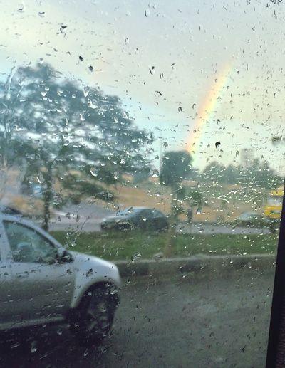 Nature Window No People Sky Tree Rainbow🌈 Raindrops