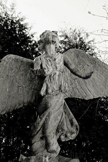 Vermont Angel Of Hope Statue Angel Hope