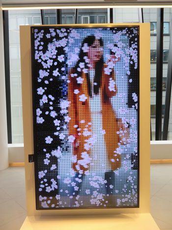 Urban Spring Fever Flowers Tokyo,Japan Ginza Tokyo Japan Mitsubishi Things I Like Screen