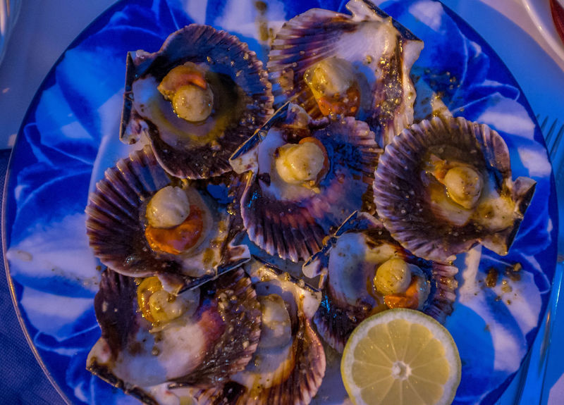 Scalops in butter Foodie Muxía SPAIN Animal Themes Close-up Crustacean Day Delicious Food Food And Drink Freshness Healthy Eating Indoors  Lemon Mussel No People Ready-to-eat Restaurant Scalops Sea Sea Life Seafood Seashell