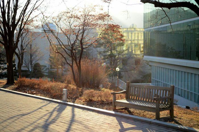 seoul national university. Streetphotography MySchool Nikon Df