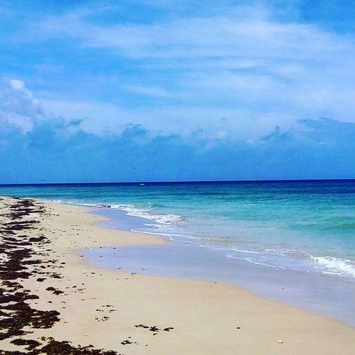 Blue Sky Blue Wave Islandlife Tobago
