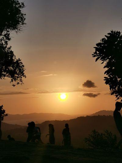 Silhouette people on tree against orange sky