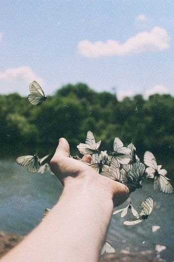 Butterfly EyeEm Nature Lover Photography Hand