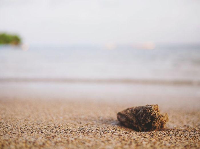 Beach Islandlife Coast Sand Wanderlust Discover  Outdoors Summertime Sea And Sky Nature Nature Photography EyeEm Best Shots EyeEm Best Shots - Nature EyeEm Nature Lover