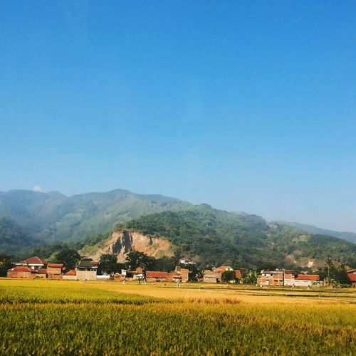 Bandung Mountains Rice Field Village Landscape_photography Indonesia_photography