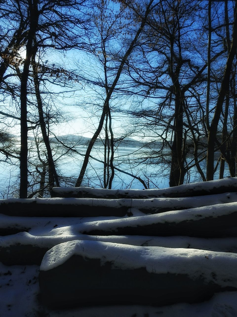 nature, tranquility, tree, winter, no people, tranquil scene, snow, beauty in nature, cold temperature, outdoors, water, bare tree, scenics, sky, day, branch