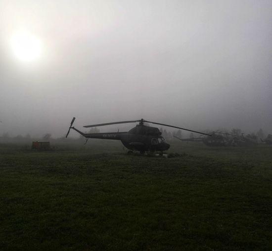 Fog Rural Scene