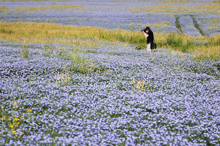 One Person Real People Day Lifestyles Men Outdoors Full Length Nature Adult Beauty In Nature Flower People Adults Only One Man Only Only Men Fields Spring Field Fieldscape Photographer Photographing Beauty In Nature