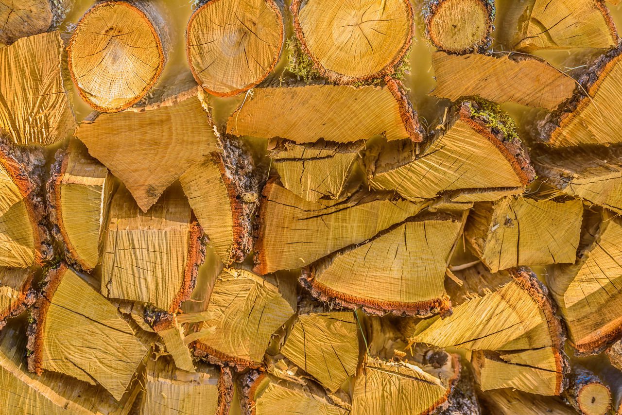 full frame, backgrounds, abundance, large group of objects, wood - material, no people, day, yellow, outdoors, close-up