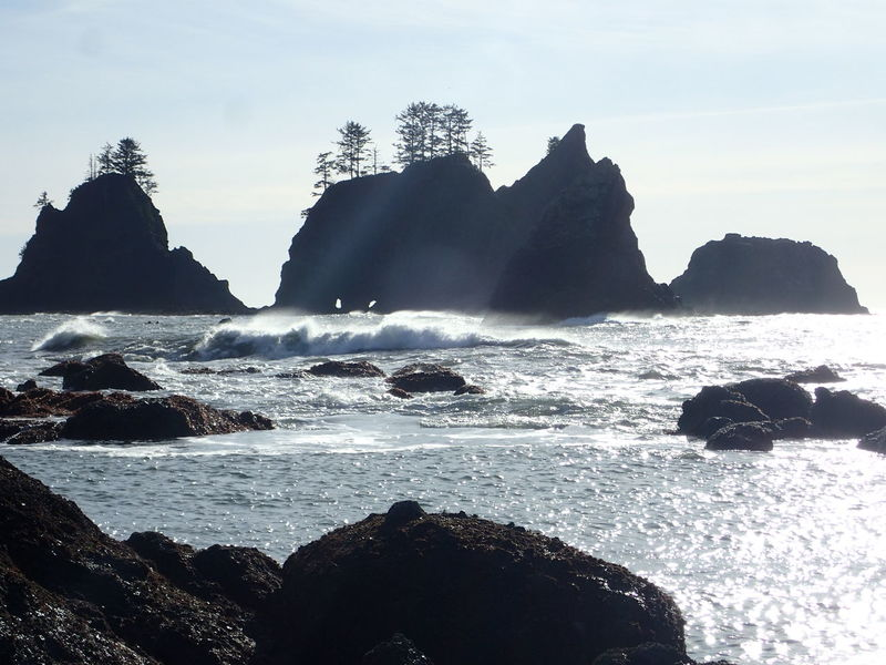 Camping Hiking PNW Shi Shi Beach Washington State Beauty In Nature Day Horizon Over Water Mountain Nature No People Outdoors Rock - Object Rock Formation Scenics Sea Sky Tranquility Water Wave