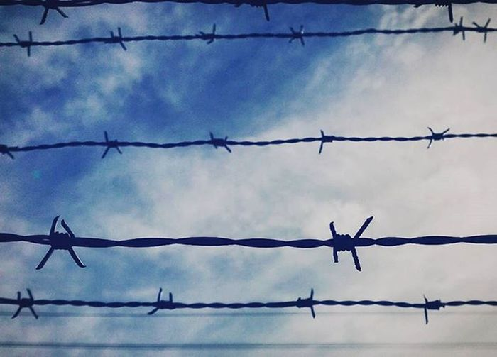 Barbedwire Caged Trapped Flaxmere Blueskies Ptk_minimal 9vaga_twisted9 9vaga_colorblue9 Tvc_r2d2