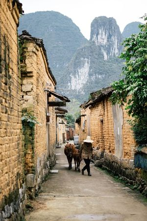 China Old Village Village Life Mountain Streetphotography Countryside Country Life Animal Vscocam VSCO Eye4photography  Travel Journey Travel Photography EyeEm Best Shots The Week Of Eyeem Travel Destinations Documentary People And Places Mountain Range Check This Out Redstartravel