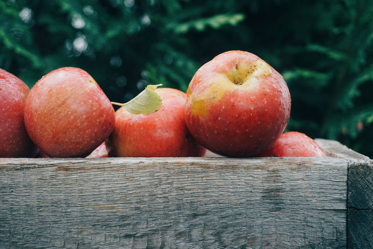 Close-up of apples in wooden container