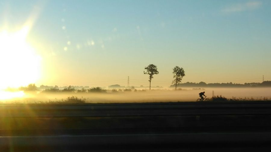 Misty Morning Sunrise_Collection Sunrise Silhouettes Early Morning Nature Photography Nofilter#noedit Commuting Bycicle Bycicle Rider EyeEm Nature Lover EyeEm Best Shots