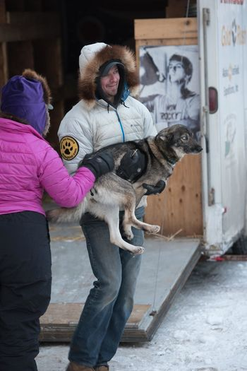Animal Dog Dogsleding Domestic Animals Husky Iditarod One Animal People