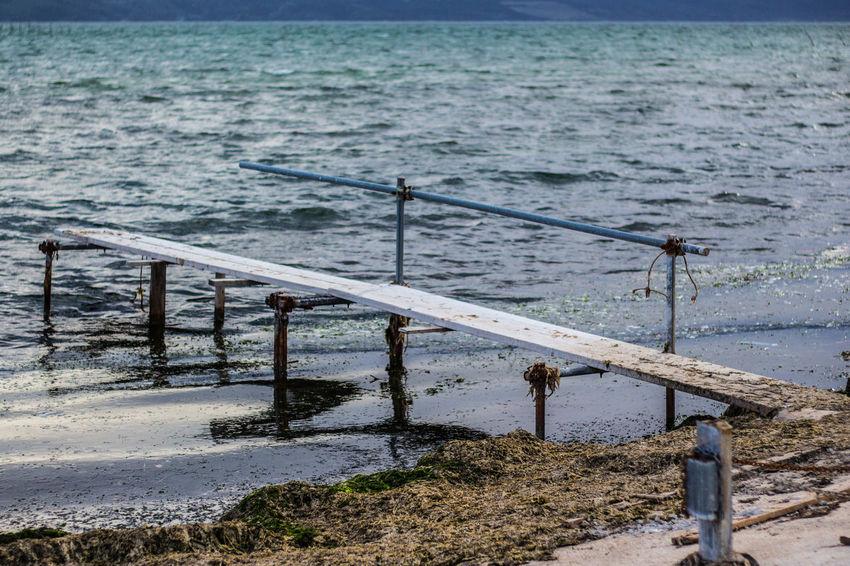 Ac Acqua Day Fiori Gargano Lago Natura Nature No People Outdoors Water
