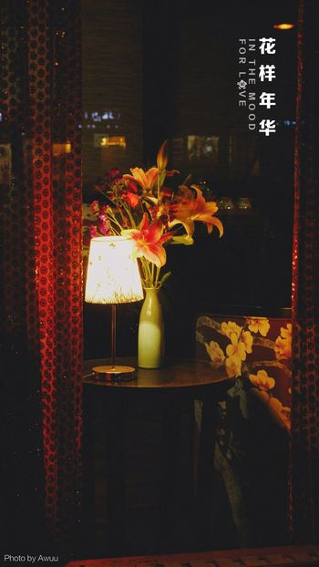 OpenEdit Flower Night EyeEm Gallery EyeEm Best Edits City Chinese Illuminated