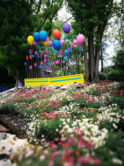 Multi Colored Tree Balloon Growth Park - Man Made Space Flower Outdoors Celebration Day Nature Beauty In Nature Freshness No People Visual Feast EyeEmNewHere Mix Yourself A Good Time Berlin Love Colour Your Horizn Summer In The City