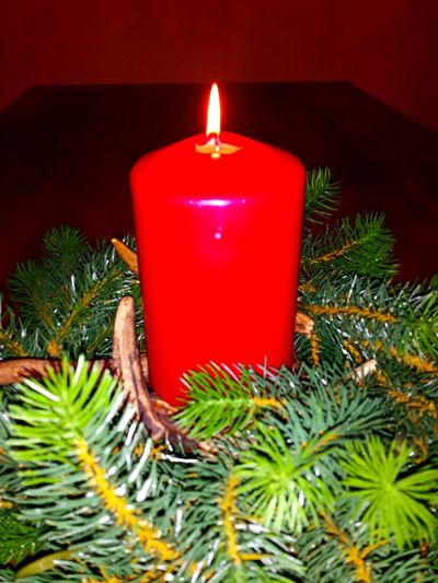 Candle Burning Candles Candles Candle Flame Candle Light Light In The Darkness Red Candles Adventsgesteck Check This Out Wachs Christmas Decorations Flame Advent Season Kerzenlicht Kerzenschein Kerzenduft Kerze Kerzenwachs Echte Kerzen Cosy Light Candles-collection Advent Flames Candlelight Christmastime