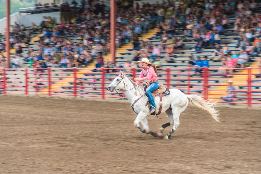 Williams Lake, British Columbia/Canada - June 30, 2016: horse and rider race to the next barrel at the 90th Williams Lake Stampede barrel race. The stampede is one of the largest in North America 90th Williams Lake Stampede Arena Happy Rodeo Travel White Horse Woman Audience Barrel Racing Candid Competition Cowgirl Documentary Editorial  Excitement Extreme Sports Horse Horseback Riding Professional Rodeo Race Smiling Speed Stampede Grounds Stands Tourism