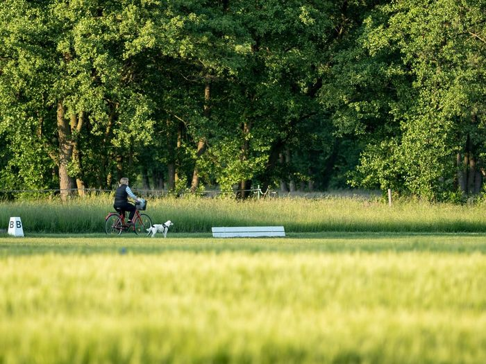 Man riding bicycle on field
