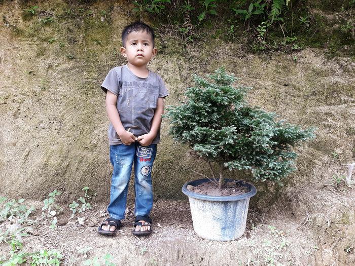 Portrait of boy standing by plants