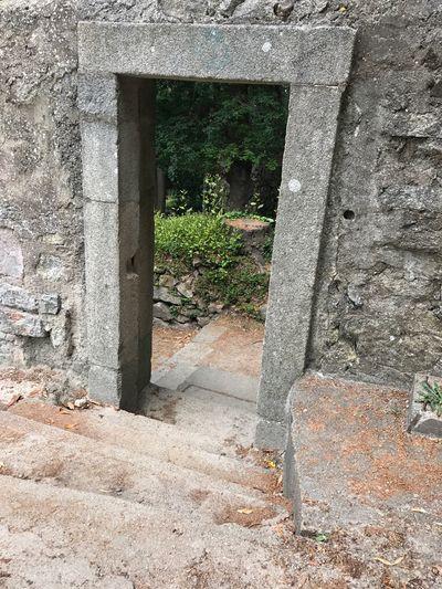 Architecture Built Structure Day No People Outdoors Plant Building Exterior Ancient Civilization Close-up