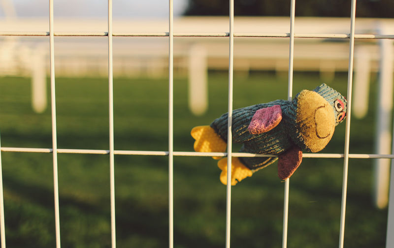 Stuffed toy on metal fence
