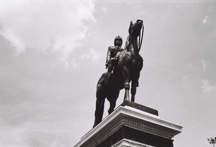 The Equestrian