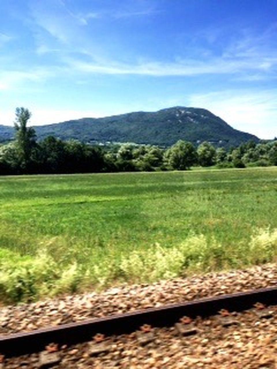 grass, mountain, landscape, scenics, nature, day, no people, outdoors, sky, mountain range, rural scene, tree