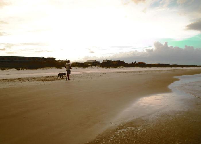 Beach Beach Walk Beachlife Coastline Dog Walking Outdoors Sand Shore Walking St Augustine, FL
