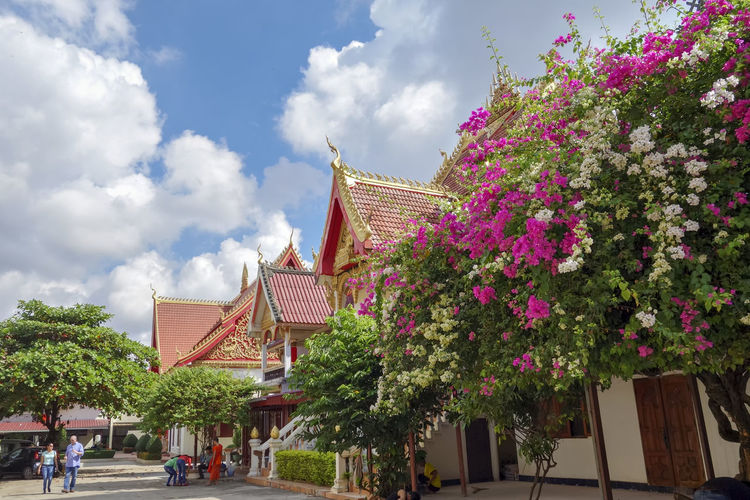 Peace Architecture Beauty In Nature Blue Sky Building Exterior Built Structure Cloud - Sky Day Flower Laos Nature Outdoors Sky Temple - Building Templephotography Tree EyeEmNewHere The Week On EyeEm Vientiane Laos Travel Mix Yourself A Good Time Connected By Travel