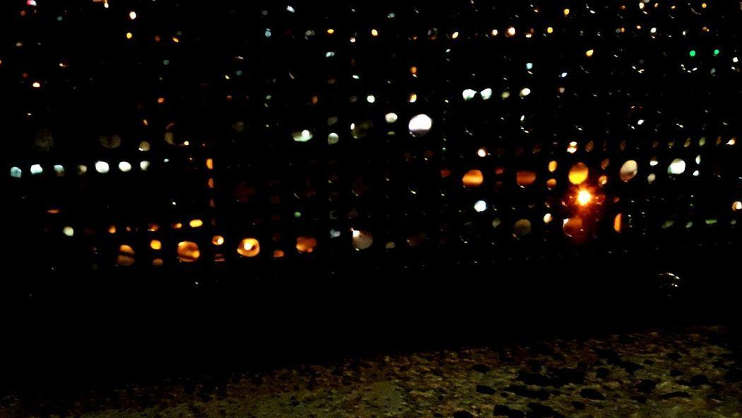 💡 Light Lights
