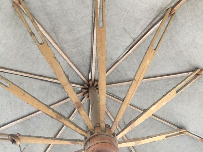 Umbrella Pattern No People Full Frame Wood - Material Backgrounds Close-up Architecture Ceiling Design Low Angle View Outdoors Built Structure