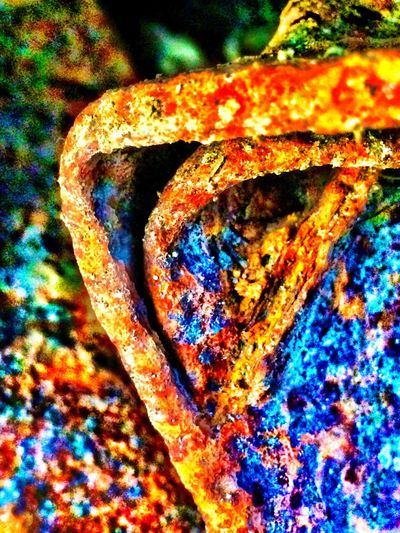 Macro Rust